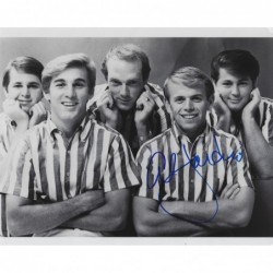 BEACH BOYS - JARDINE Al