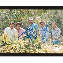 Autographe Bruce JOHNSTON, Mike LOVE & Brian WILSON - BEACH BOYS
